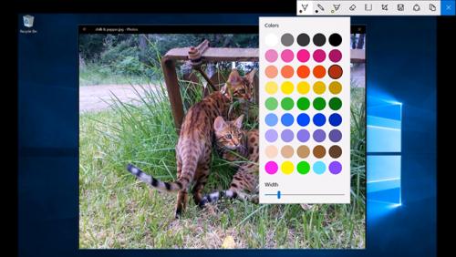 Windows 10 Ink API